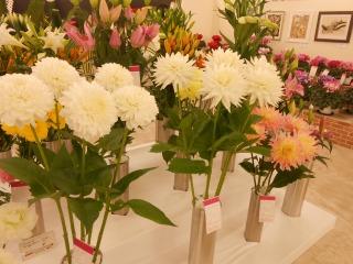 房総の花々1