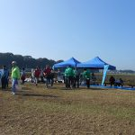 決算審査、印旛沼の秋