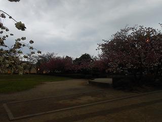 御伊勢公園