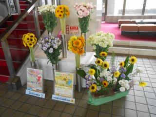 議会棟の花2