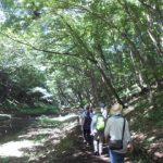 下志津畔田の自然観察会