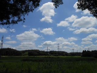 谷津田の空
