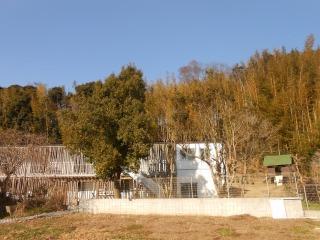 光の子保育園