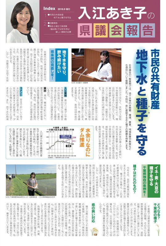 入江あき子の県議会報告 2018年9月発行