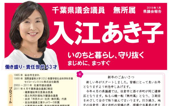 入江あき子の県議会報告 2019年1月発行