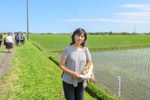 千葉県農林総合研究センター成東育成地 イネの原原種栽培を見学