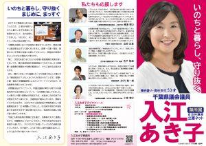 千葉県議会議員 入江あき子 政策集