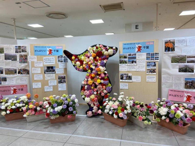 千葉そごうで開催中の「千葉県フラワーフェスティバル」