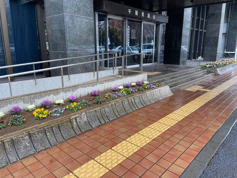 議会棟玄関脇の花壇