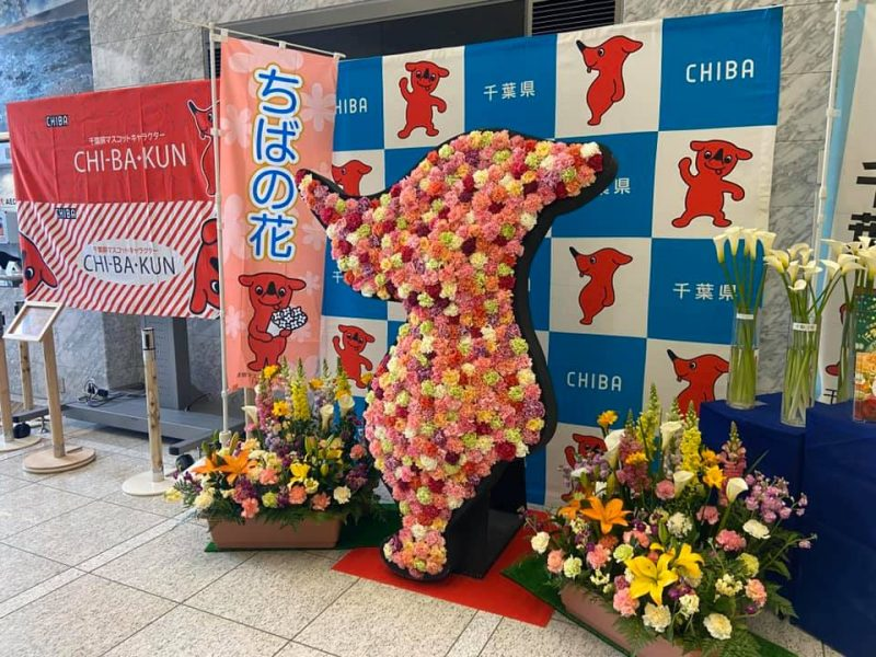 県庁本庁ロビーに飾られた房総の花々