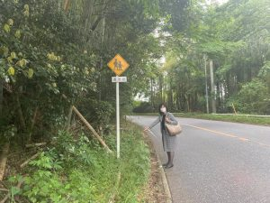 通学路の危険箇所