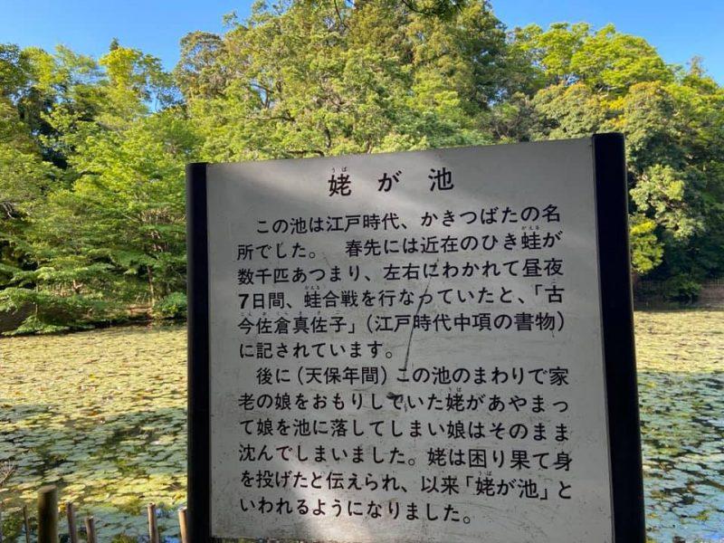 早朝の佐倉城址公園