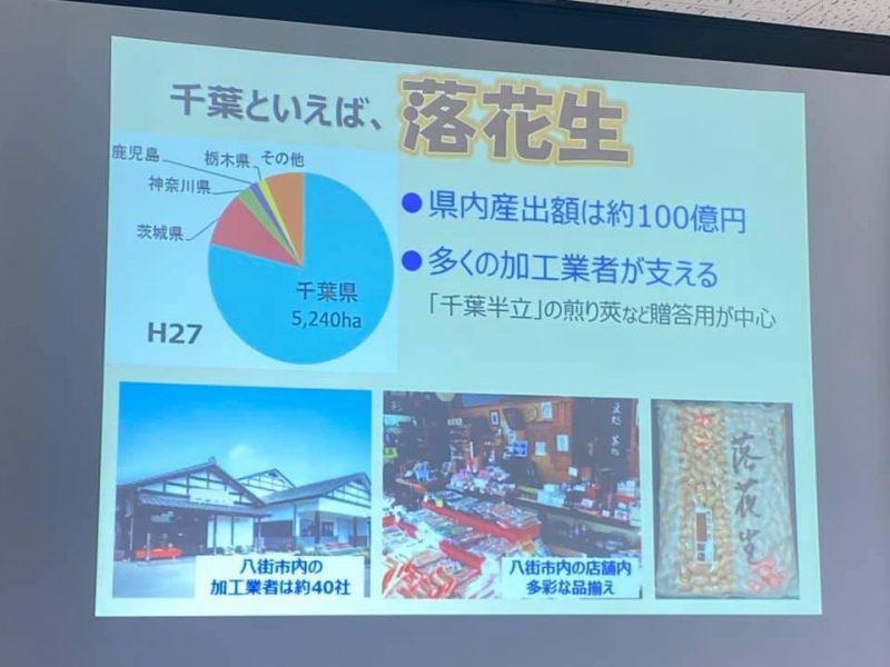千葉県農林総合研究センター落花生研究室