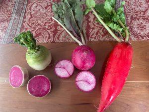 有機栽培で育てられた地場野菜