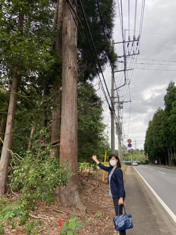 災害に強い森づくり事業/ 予防伐採/ 令和元年房総半島台風/ 熊谷知事現地視察